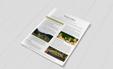 Winery Newsletter