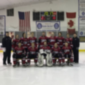 CUA Ice Hockey 2017-2018 Team Pic.jpg
