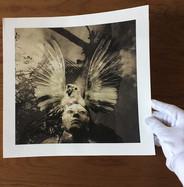 Fine art giclée printing services