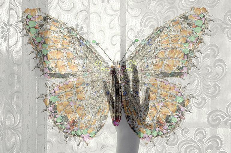 butterflyhandblend.jpg