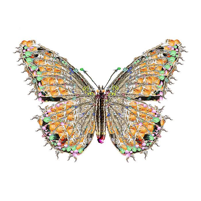 Beaded Monarch