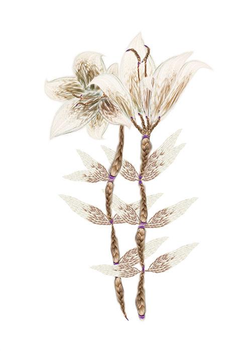 Lirios/Lilies