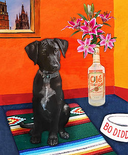 Bo Diddley Pet Art