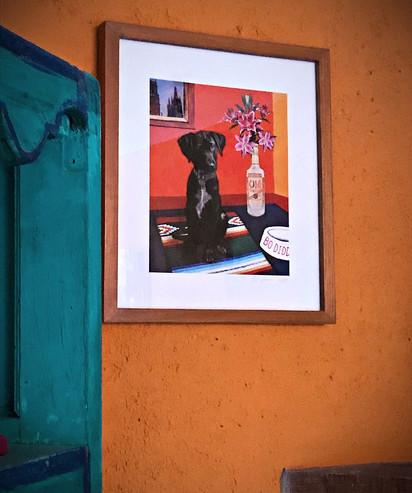 Pet Portrait in client home