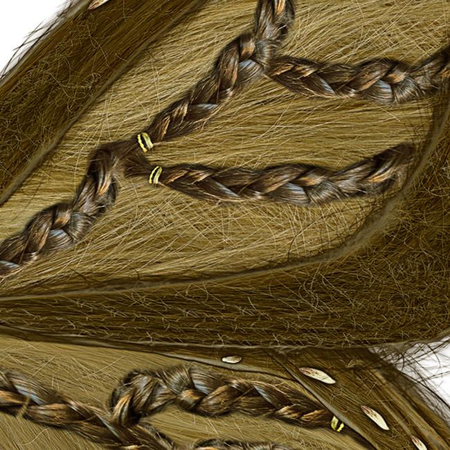Detail, Monarch