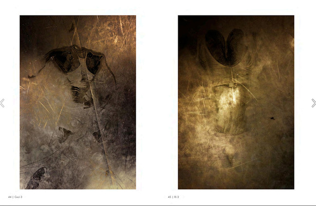 BETA - Developments in Photography, Issue 22, pages 44-45