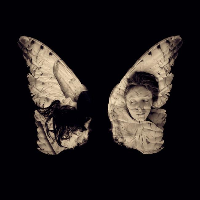 Sleeping on Wings