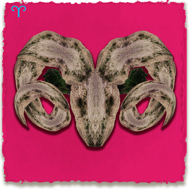 Aries, Pink Background