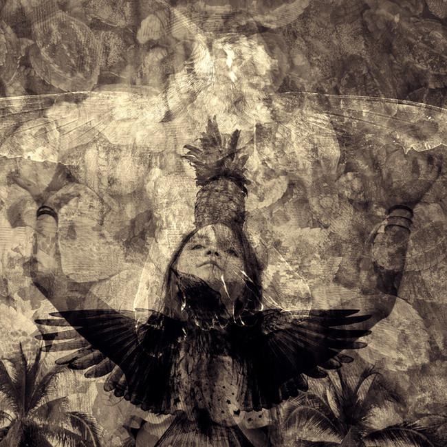 Balancing Pineapple, Turtles and Wings
