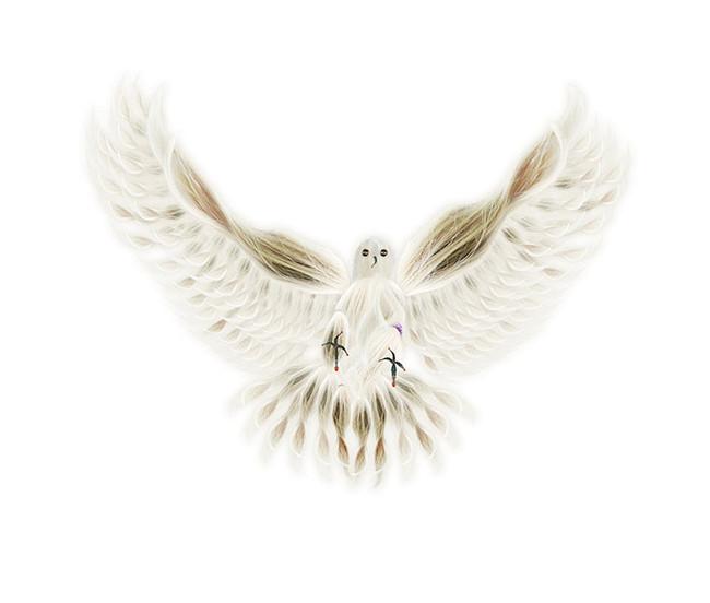 Paloma/Dove