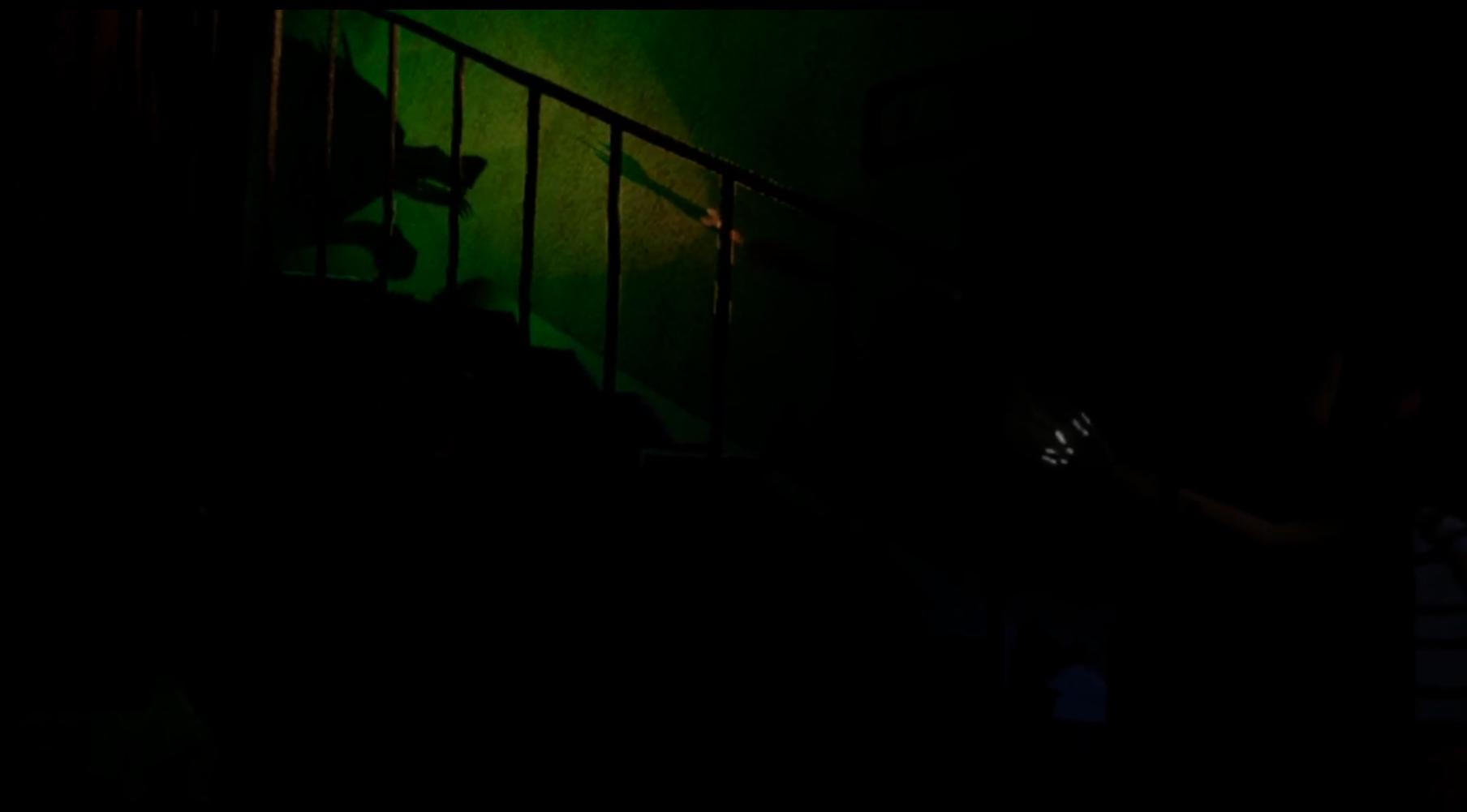 Wolves_900_StairWolf