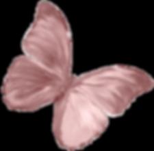 IMG_9582_edited_edited_edited_edited.png