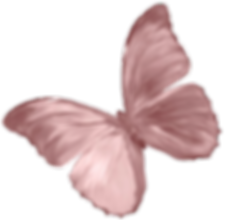 IMG_9582_edited_edited_edited.png
