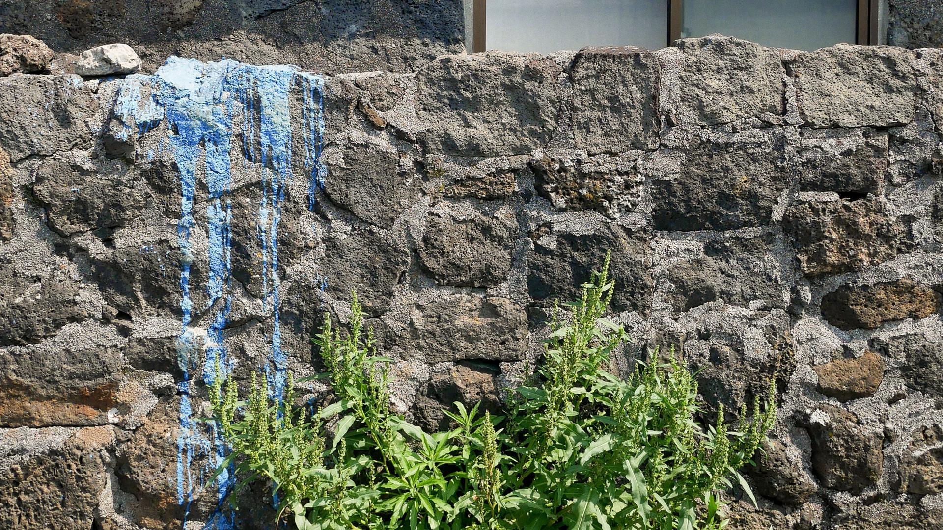 파란색 페인트