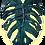 Thumbnail: applique feuille céramique