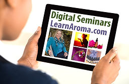 Enroll in 2hr Digital Seminars