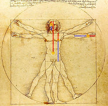 davinci-illustration-with-golden-ratio_7