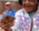 Senior Citizens and Butterflies from Sar