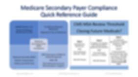 MSP  Compliance Guide-1.jpg
