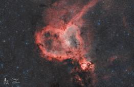 Cédric MAURO - IC 1805 21-11-2020.jpg
