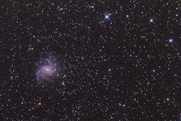 NGC6946 (Nicolas).jpg