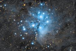 Cédric MAURO - M45 - Les Pléiades.jpg
