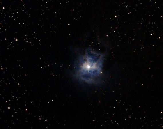 NGC7023 (Nicolas).jpg