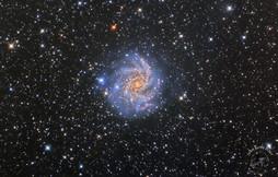 Cédric MAURO - NGC 6946 Galaxie du feux d'artifice.jpg