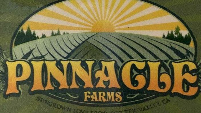 Pinnacle Farms - Sherbez 1/8th