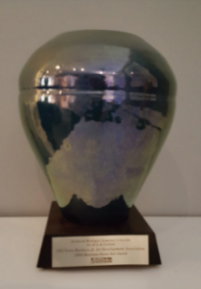 Award 3 Trophy.