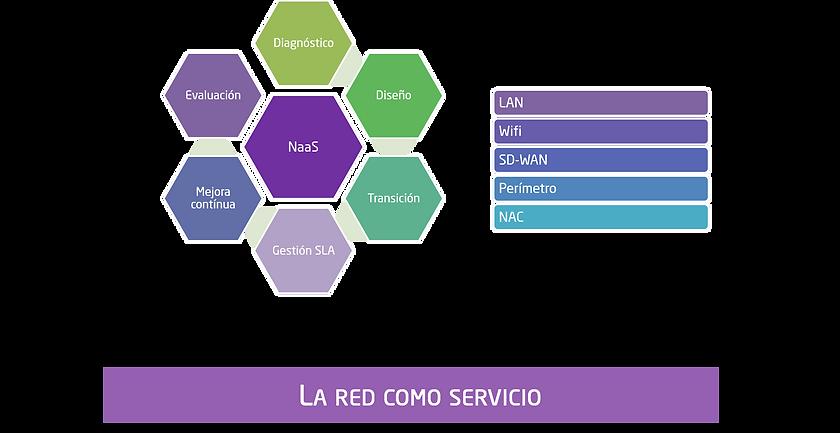 La red como servicio.png