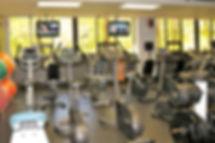 Unionville Farmington CT Gym   Cardio Equipmet