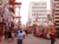 Globo Suzuranto para Luminária Japonesa. Bairro Liberdade Luminária