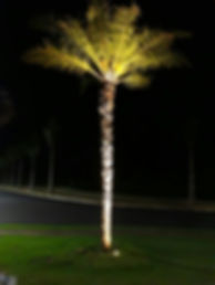 Lâmpada AR111 25w 2000 lúmens 24° - Uso em embutido de solo.
