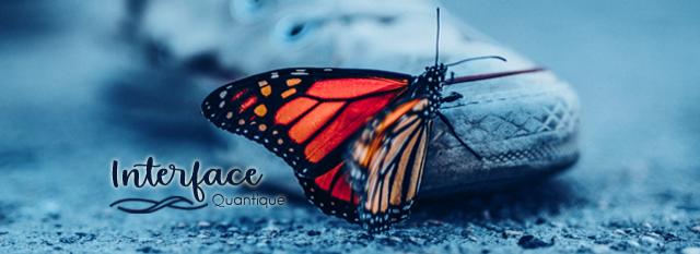 interface quantique papillon