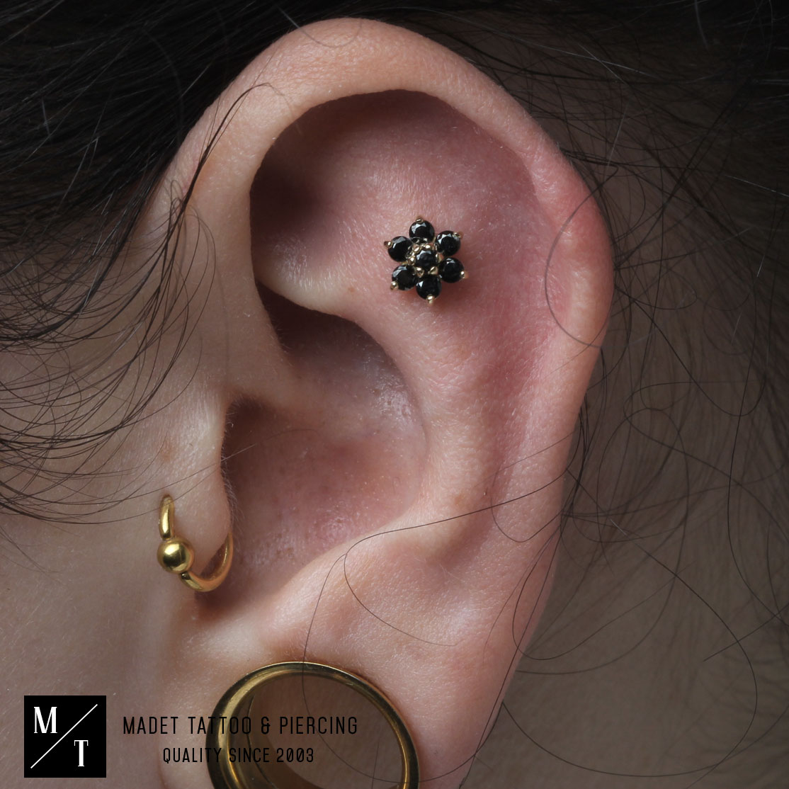 Ohrpiercing Anatometal