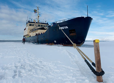MS freya winter expedition