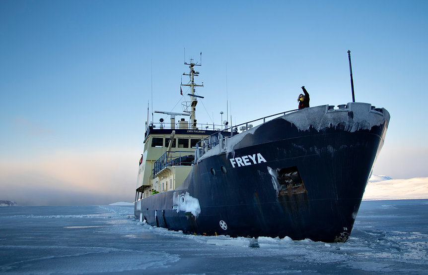 freya granath melissa arktis