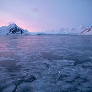 Arctic_MelFred_a_jun2018_243.jpg