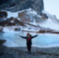 Explore the arctic