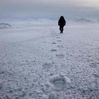 Arctic_MelFred_a_jun2018_229.jpg