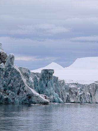 glacier wildlife photography svalbard spitzbergen