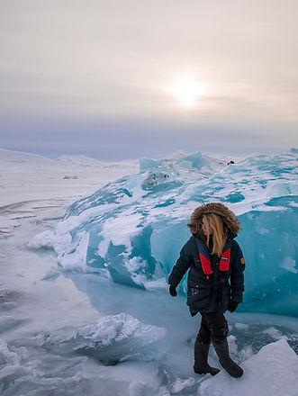 arctic cruise expedition scoresby spitsbergen polar bears