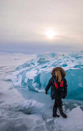 arctic cruise expedition svalbard spitsbergen polar bears