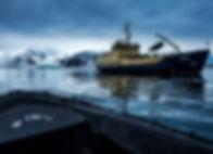 MS Freya expedition Spitsbergen Spitzbergen
