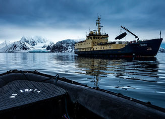 MS Freya expedition Spitsbergen Spitzbergen polar bear