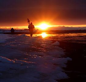 Svalbard Arctic Motherbear Melissa Schäfer Fredrik Granath