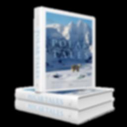 polar tales 3d pile PNG.png