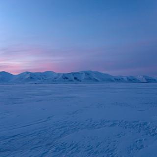 Arctic_MelFred_a_jun2018_248.jpg