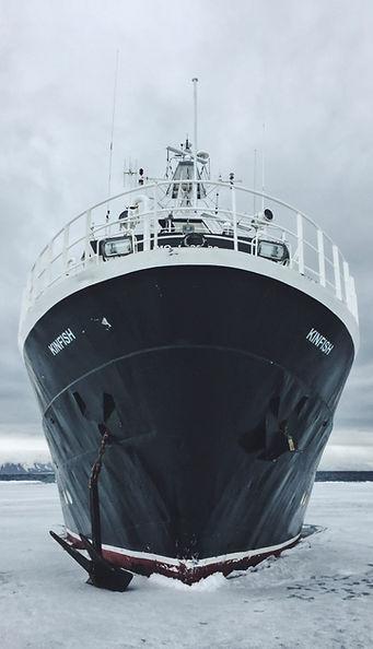 kinfish cruise svalbard expedition